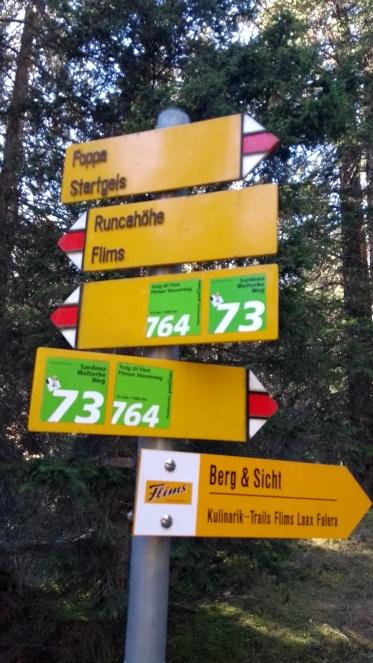 Trutg dil Flem Switzerland
