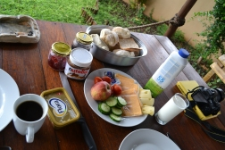kruger nationalpark South africa breakfast