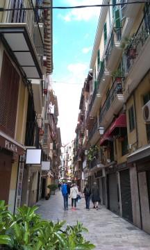 Palma (3)