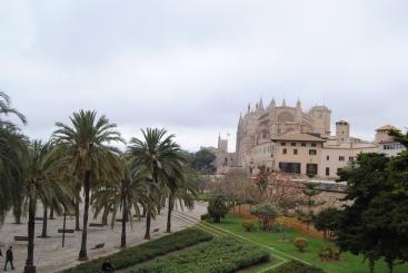 Palma Cathedrale (7)